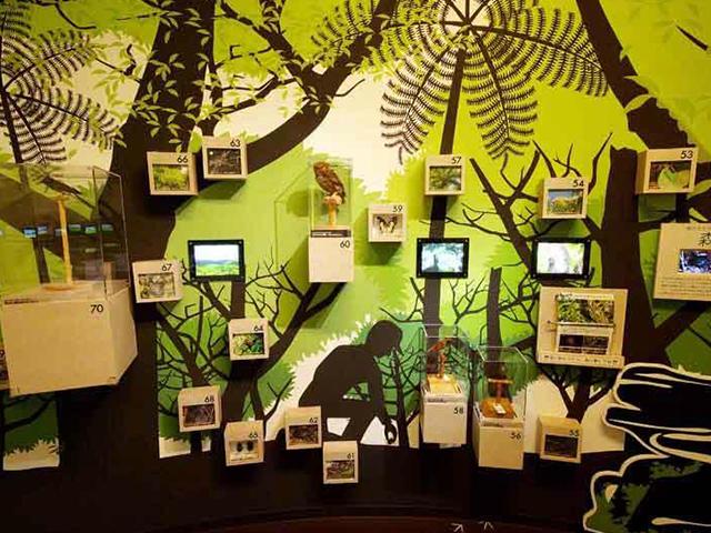 やんばる野生生物保護センター